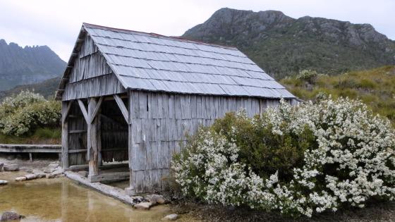 Dove Lake Boathouse, Cradle Mountain, Tasmania, Australia