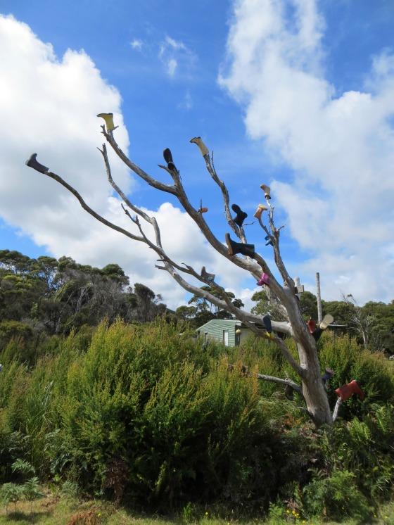 Pieman Heads, Tasmania, Australia