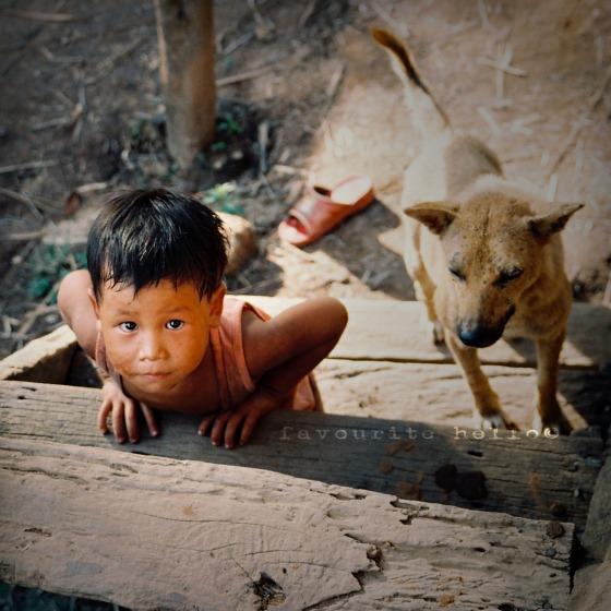 thaiboyanddogcr
